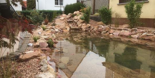Teichgestaltung durch Naturgarten Hechler